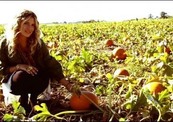 pumpkin3.5