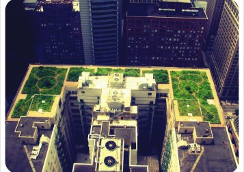 800px-20080708_Chicago_City_Hall_Green_Roof