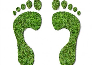 carbon_footprint1