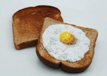 egg_on_toast_embroidery3.jpg.1200x1200_q85