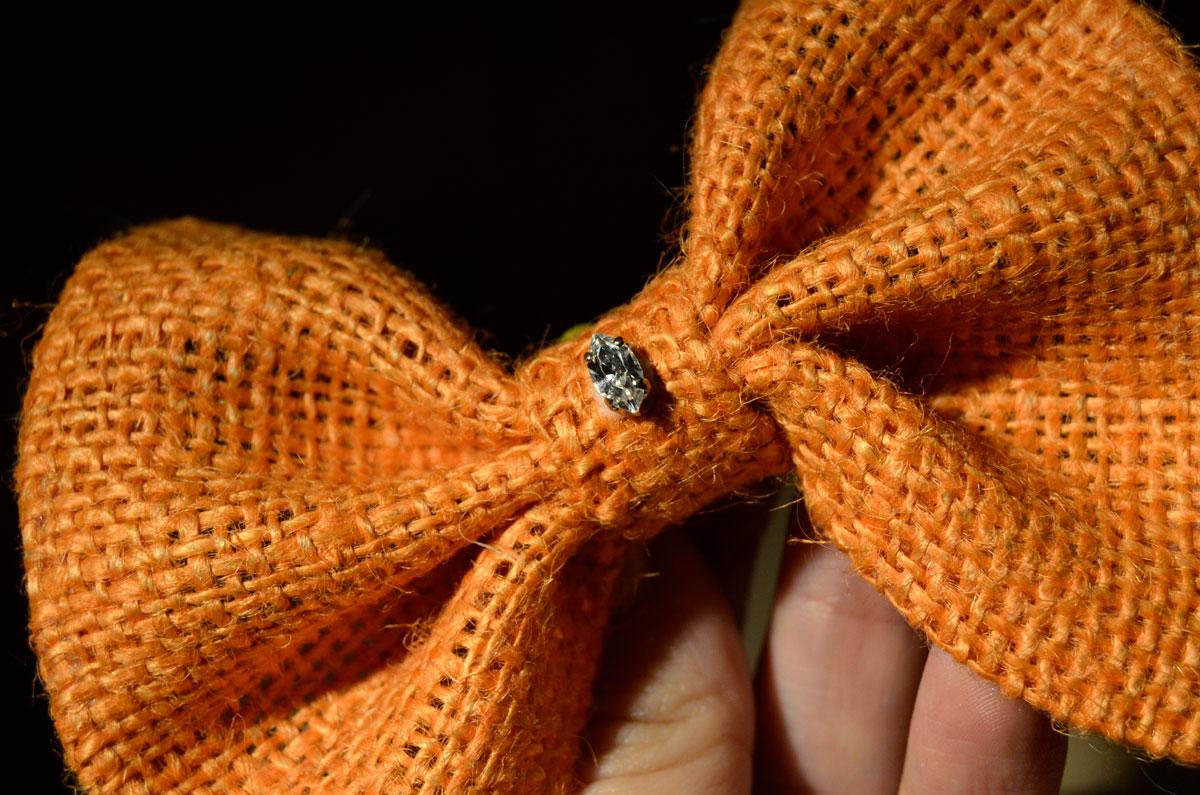 Mr Kate Diy Clip On Bow Tie