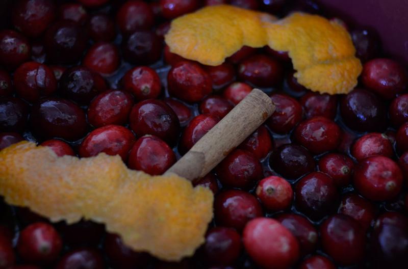 Orange-Cardamom Cranberry Sauce Recipes — Dishmaps