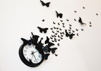 time_flies33